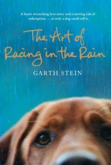 Garth Stein (1)